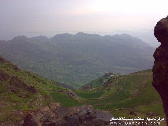 صور من الطبيعة الخضراء في اليمن