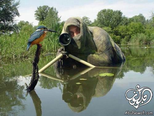 صور غريبة صور مضحكة