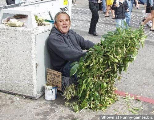 نكشة راس على جورج بوش !!! ادخل و ادعيلى
