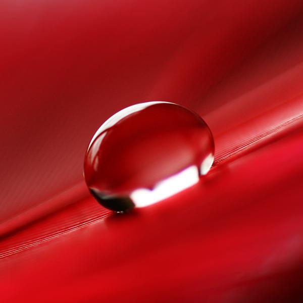 خلفيات حمراء روعه وجذابة red wallpapers