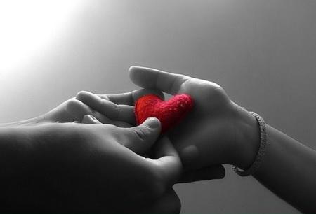 حكايات قلوب