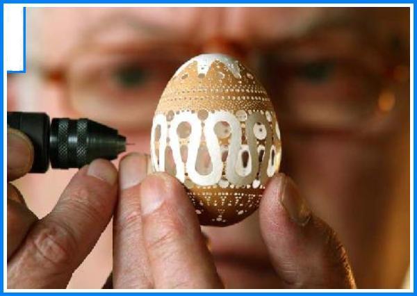 صور لقشر بيض ابداع