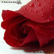 رمزيات جوال رومنسية , رمزيات قلوب وورود