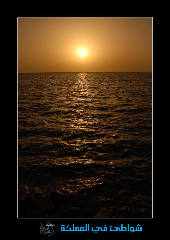 صور شواطئ السعودية