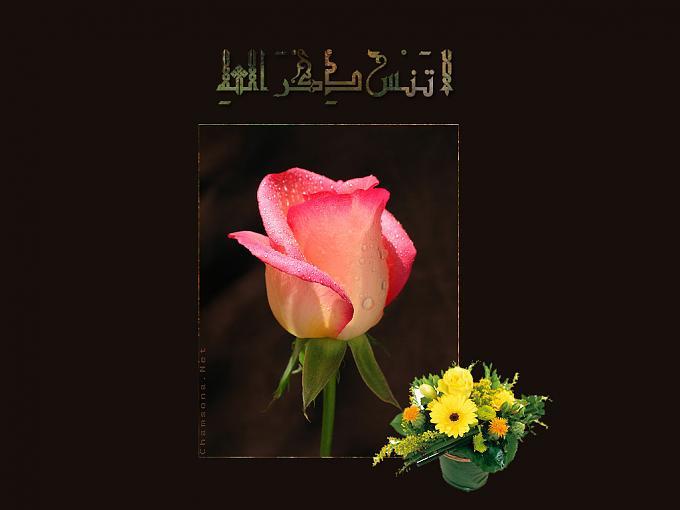 خلفيات اسلاميه ,,الجزء الاول