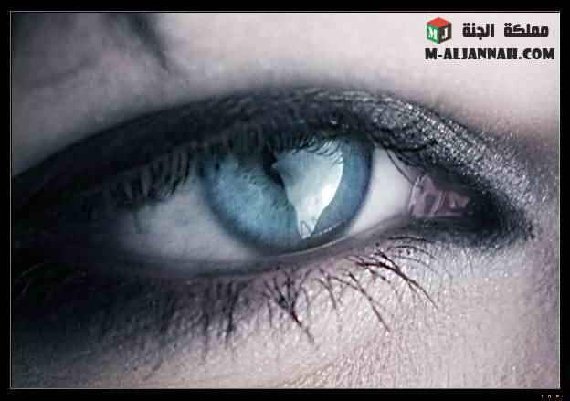 كلام القلوب والعيون