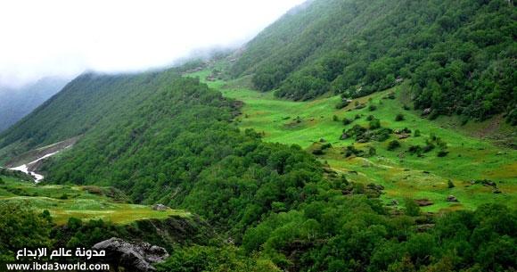 وادي الزهور في الهند