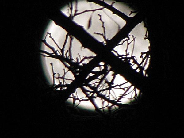 إطلالة القمر مع قصيدة شجرة القمر في مساء 20 اذار 2011