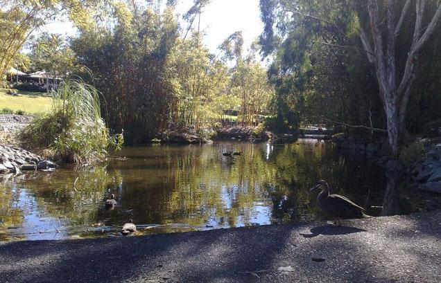 بريزبين ( Brisbane ) - جنوب شرق كوينزلاند