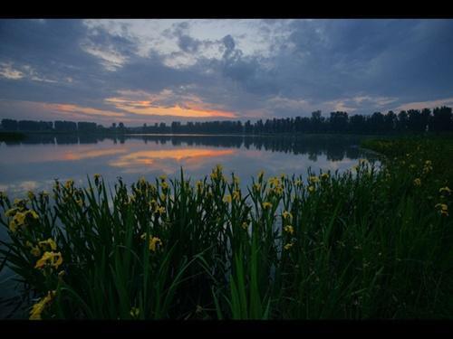 حديقة هانشيتشياو للأراضي الرطبة في بكين