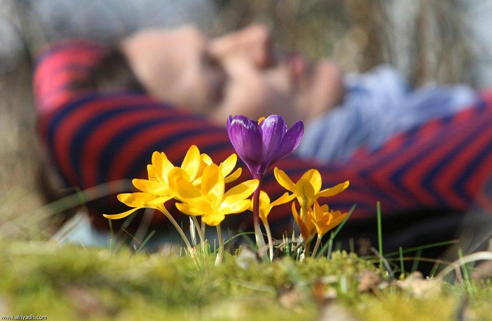 أجواء الربيع هنا وهناك