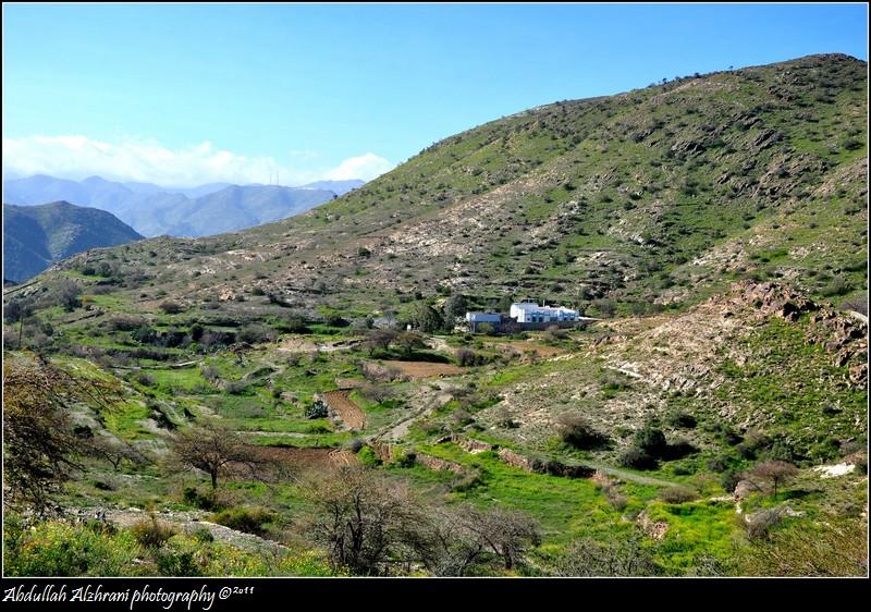 صور ديرتي زهران 2 ..........