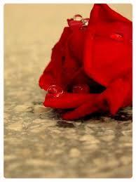 ربي ألهمني يقينا يجعلني أؤمن بأن كل ماأحلم به سيأتي يوما ...