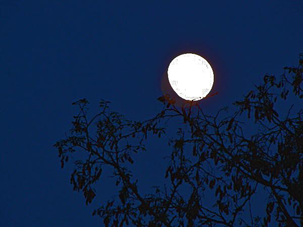 طلوع القمر فوق مدينتنا مساء يوم الجمعة الموافق 3 مايس أيار 2012
