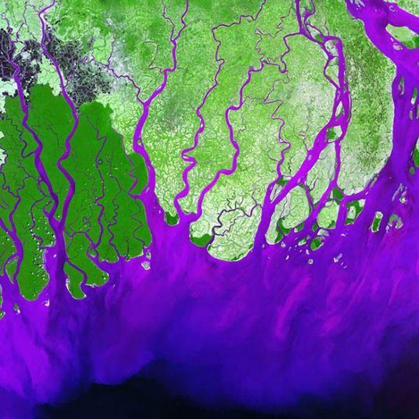 كأنها شرايين داخل الجسم : صور من القمر الصناعي لمجرى الانهار