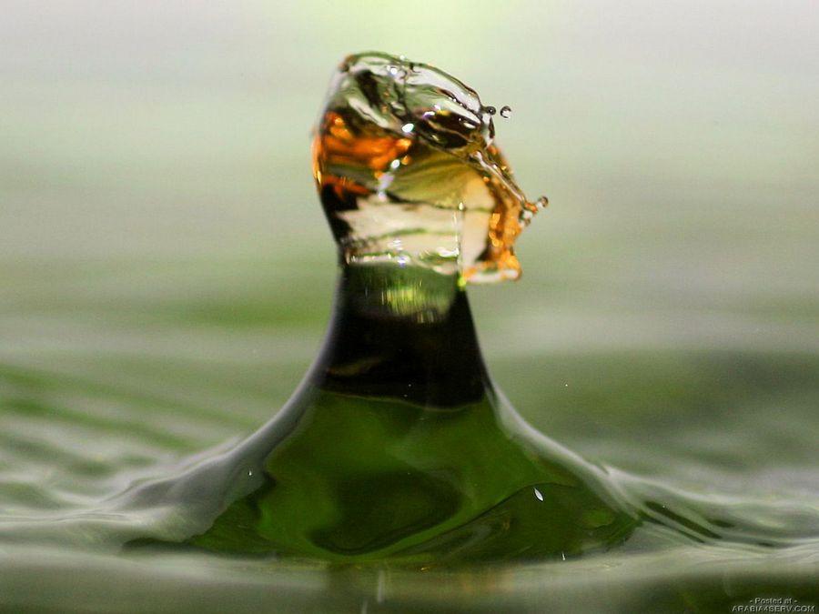 صور لقطرات الماء