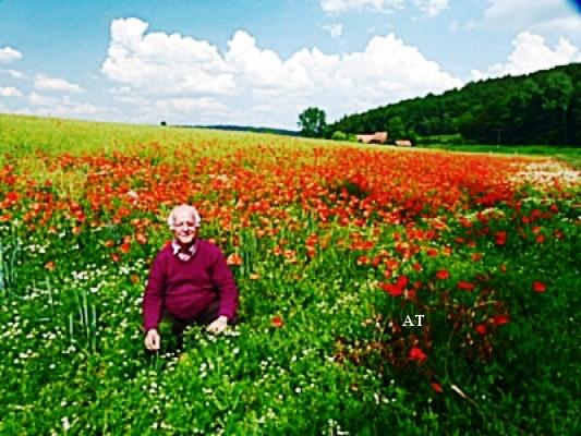 زيارة حقول أزهار الخشخاش الساحرة في يومي 5 و 6 حزيران 2011