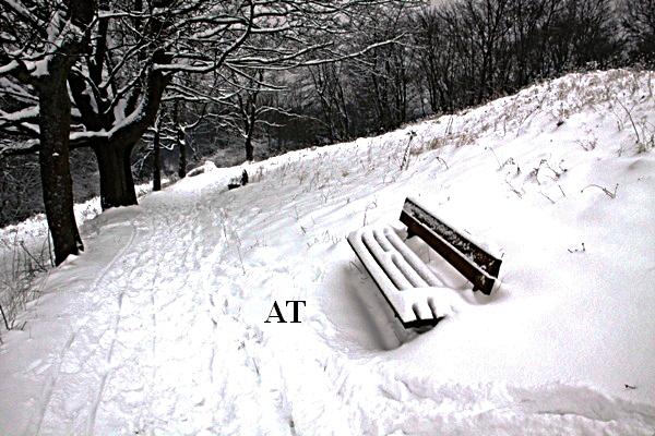 جبل قلعة النساء وما أدراك ما جبل قلعة النساء في مدينتنا 22 يناير 2013