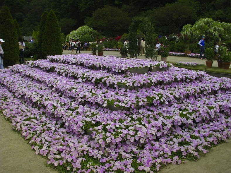 حدائق اليابان ..