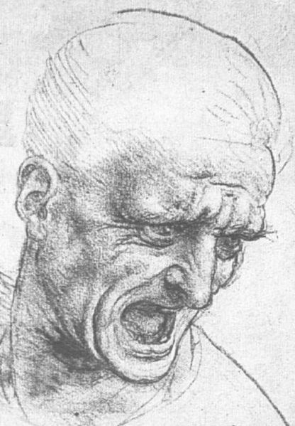 """رسومات للفنان الإيطالي """" ليوناردو دافنشي """""""