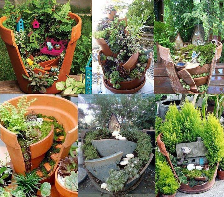 فن الإبداع في الحدائق