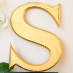 اسمي S