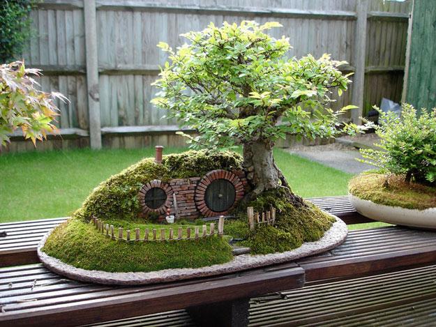 فنان يبدع في صنع حدائق مصغرة